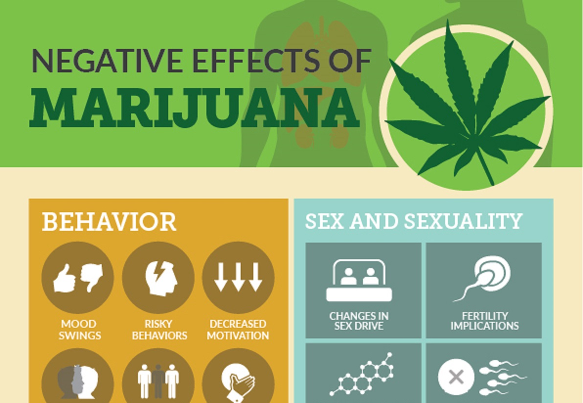 The negative effects of Marijuana [infographic] | Logicum